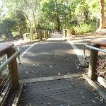 Intersection near the entrance to the Wildlife Exhibits at Blackbutt Reserve (399379)