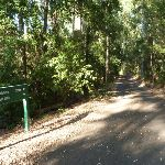 Intersection and sign in the Blackbutt Reserve  (399421)