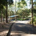 Sealed trail and picnic shelter near Carnley Reserve (400096)