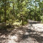 Sign and trail on a sunny day in the Blackbutt Reserve (400234)