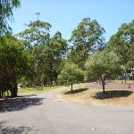 Wide sealed trails at Richley Reserve in Blackbutt Reserve (401536)