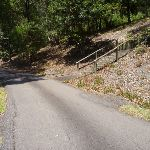 Wide trail with timber steps on the right at Richley Reserve (401650)