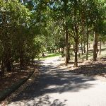 Sealed trail in Richley Reserve in Blackbutt Reserve (401674)