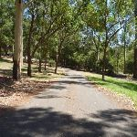 Sealed trail in Richley Reserve in Blackbutt Reserve (401698)