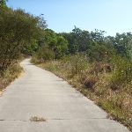 Sealed trail close to Green Point in Green Point Reserve (403228)