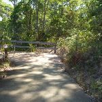 Zig Zag trail in Green Point Reserve (403258)