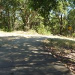 Downhill Trail in Green Point Reserve close to Lake Macquarie (403336)