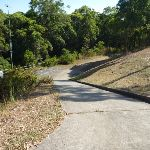 Fire trail and culvert behind houses in Green Point Reserve (403531)