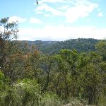 View high over the Coxs River Valley (413114)