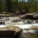 Coxs River near the Six Foot Track (413939)