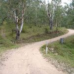 Dirt road winding up the valley east of Kiangatha Yards (414722)