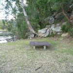 Picnic area on the north side of Apple Tree Bay (421027)