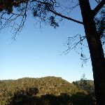View from Near the bottom of Mt Kuring-gai Track (422080)