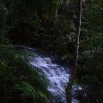 cascade on Valley of the Waters Creek (42390)