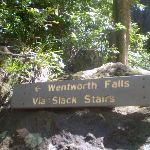 Signpost to Wentworth Falls (42564)