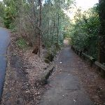 Down past Max Allen Dr to Jenkins Hill (55007)