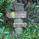 Signpost near Lady Game Drive (55181)
