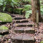 Stone steps along the track (56195)