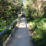 Steps between balmoral park and Middle head road (57173)