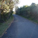 Old Fort Rd (57509)