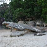 Rock stairs at Northern end of Clifton Gardens (57545)