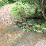 Stepping stones at Old man's Valley Creek (5770)