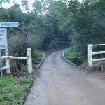 Following the Ourimbah creek road (58211)