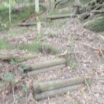 path up from Wollombi brook (59093)