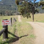 a slow down warning sign for cars (59816)