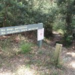 Int. Corporate Park Scenic Trail and Great North Walk (67431)