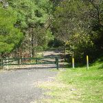 Management trail next to Ginger Meggs Park on Valley Rd (6844)