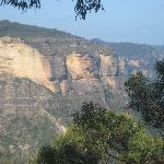 Katoomba Cliffs from Botting's Lookout (6926)
