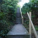 Stairs up to Ogilvy Rd (70390)