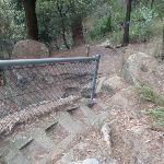 steps down into Galston Gorge (71044)