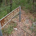 Sign into tributary of GLenbrook Creek read top of sign (73341)