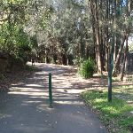 Following the service trail out of Davies Reserve. (77425)