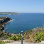 View from Manly Scenic Walk (78853)