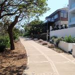 Manly Scenic Walkway behind houses (79066)