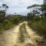 The King's Tableland Servicetrail (7967)