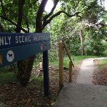 Manly Scenic Walkway sign (82324)