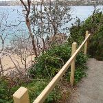 Track down to Castle Rock Beach (82351)