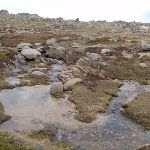 The headwaters of the Snowy River (84961)