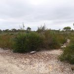 Intersection of Elvina Track and rock engagings (90474)