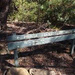 Prince Henry Cliff Walk sign (91597)