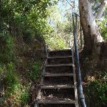 Stairs above Furber Lookout (91876)