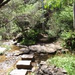 Stepping stones across the Kedumba River at the base of Katoomba Cascades (92227)