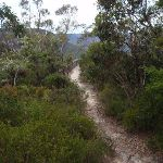 Just back from Copelands lookout (93409)