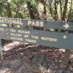 Sign at int of National pass and Valley of the waters (93955)
