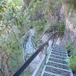 Looking down stair case on Valley of the waters track (94030)