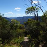 Olympian Lookout track (95572)